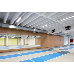 Swordplay area Sport